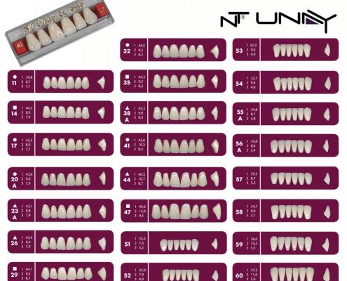 Ntunay1